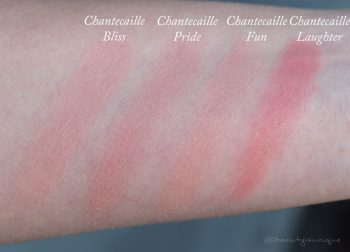 chantecaille-pride-swatches-cheek-shade