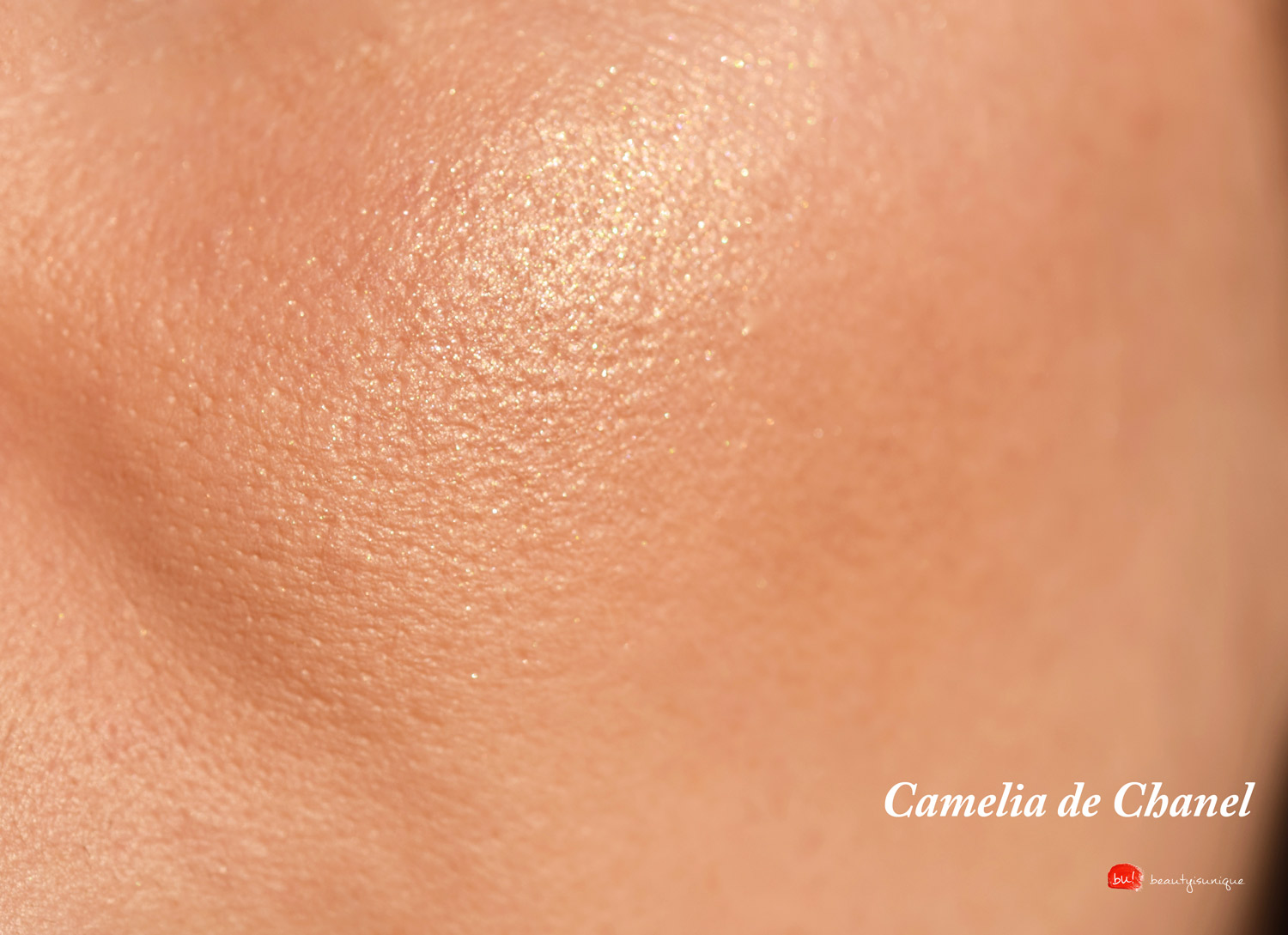 camelia-de-chanel-makro-swatches