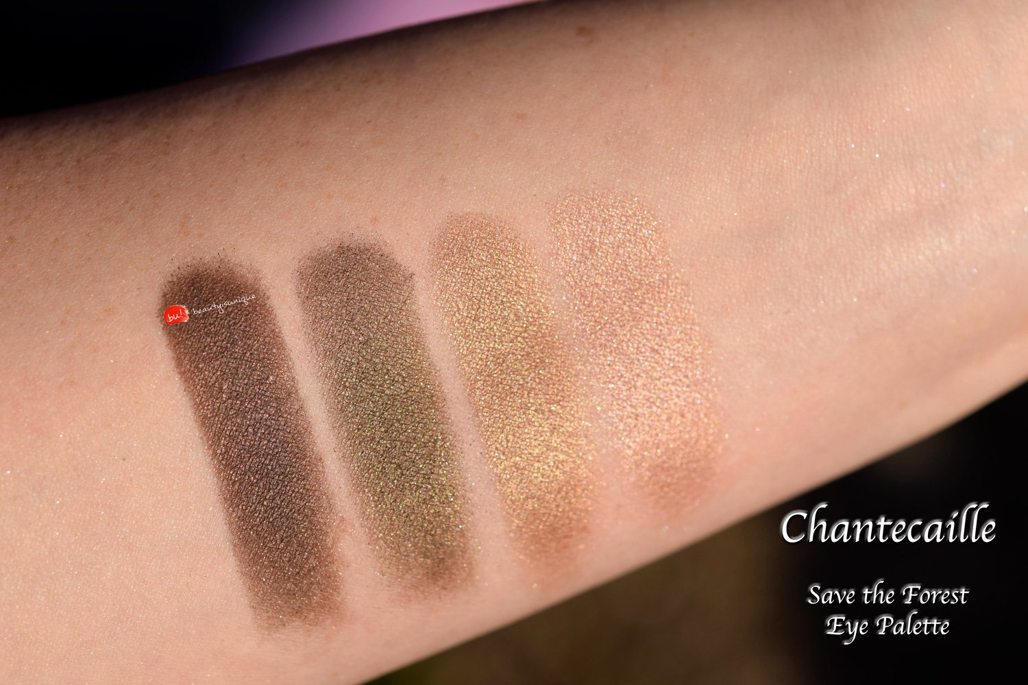 chantecaille--save-the-forest-eye-palette-swatches