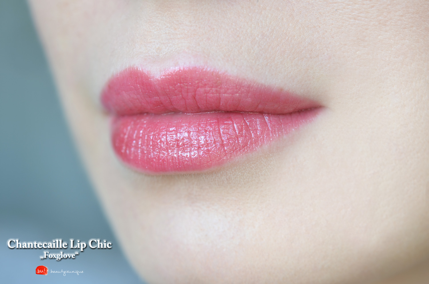 chantecaille-foxglove-lip-chic-swatches