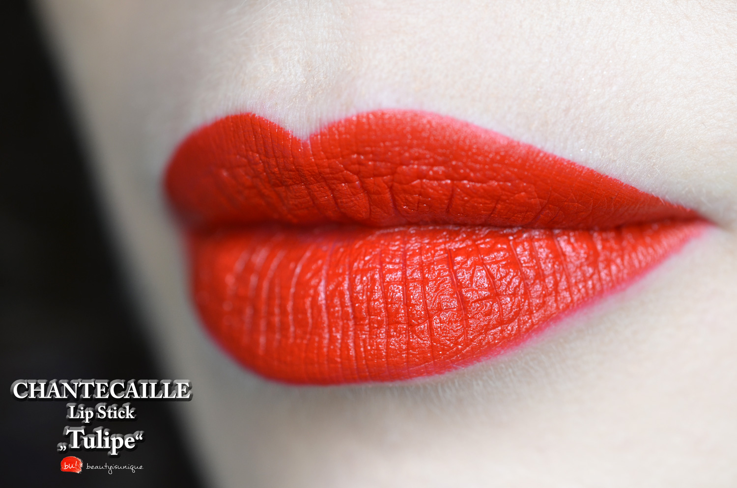 Chantecaille-lip-stick-tulipe-review