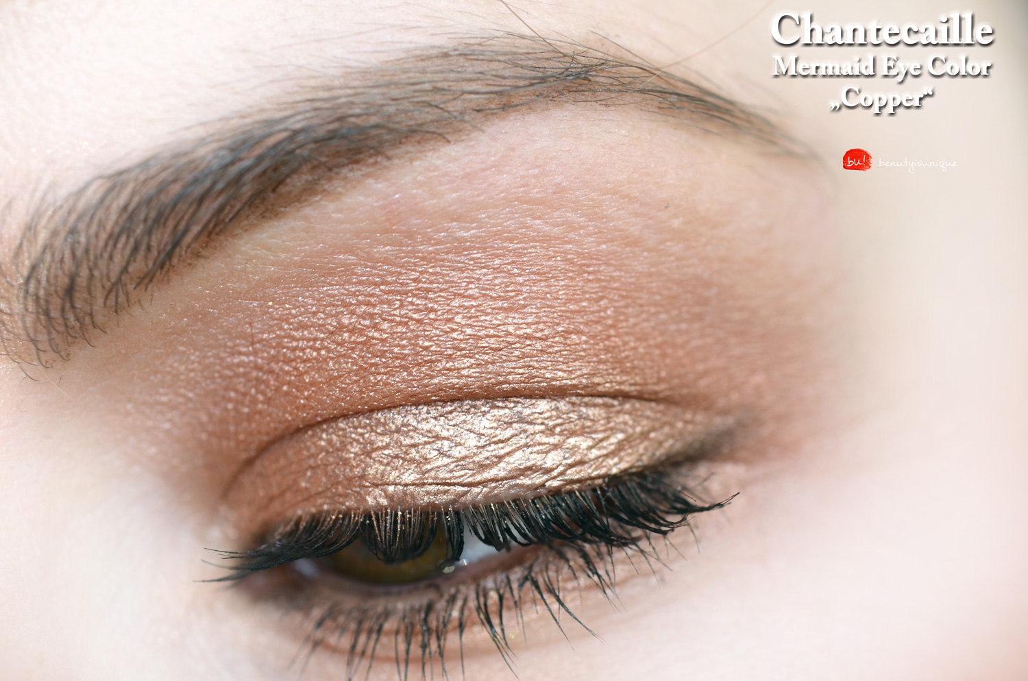 chantecaille-copper-mermaid-eye-color