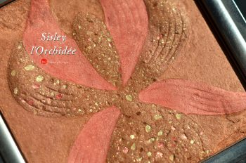 sisley-l'orchidee-swatches