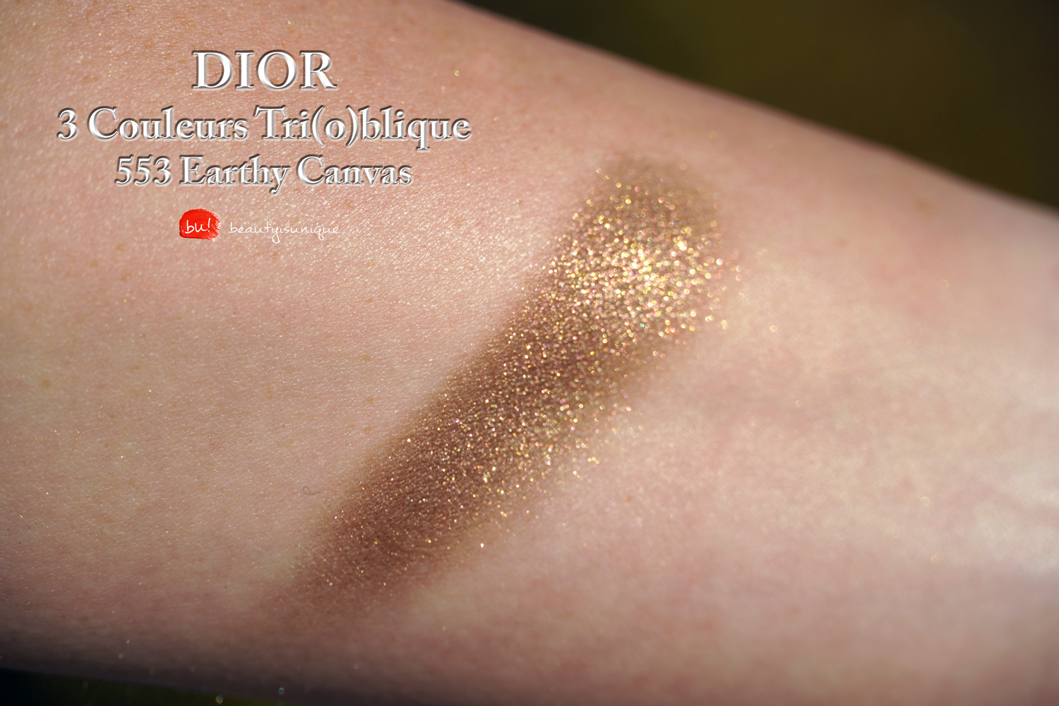 Dior-earthy-canvas-553-swatches