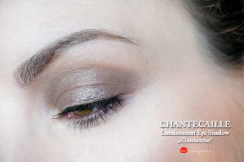chantecaille-luminescent-eye-shadow-rhinocerus-swatches