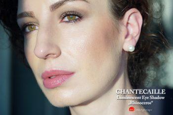 chantecaille-luminescent-eye-shadow-rhinocerus-swatches