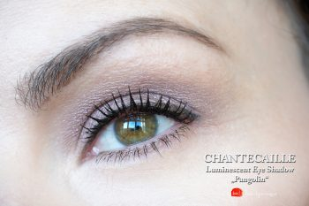 chantecaille-luminescent-eye-shadow-rhinocerus-pangolin-swatches