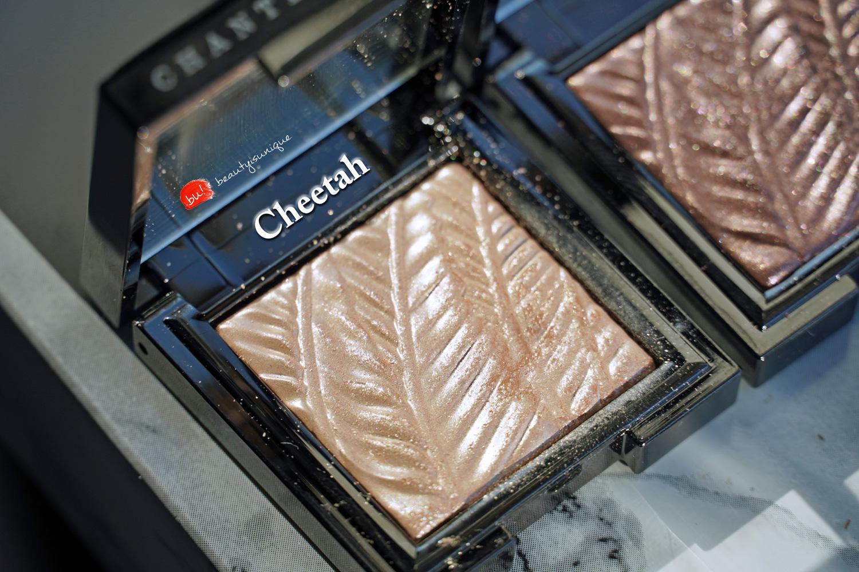 chantecaille-luminescent-eye-shadow-rhinocerus-cheetah-swatches
