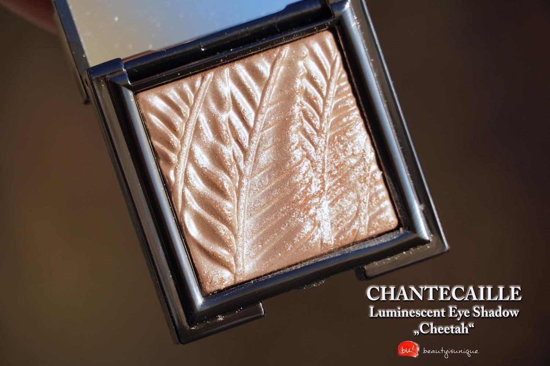 chantecaille-luminescent-eye-shadow-cheetah