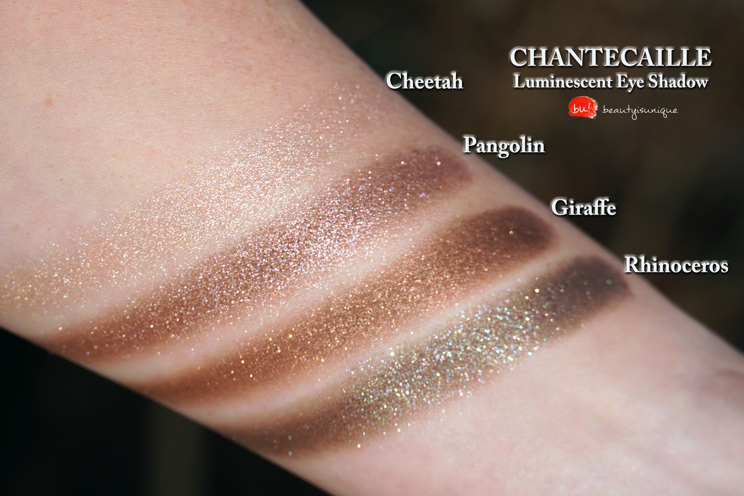 chantecaille-luminescent-eye-shadow-rhinoceros