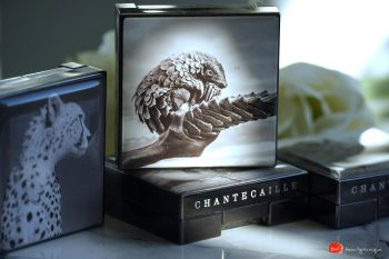 chantecaille-luminescent-eye-shadow-pangolin