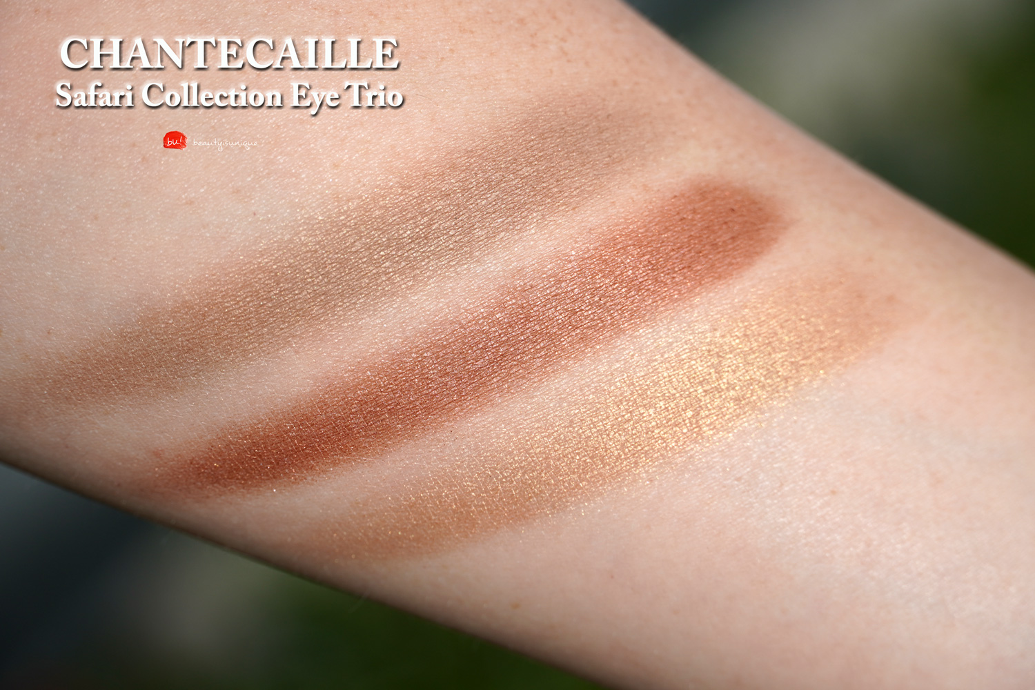 chantecaille-safari-collection-eye-trio-swatches