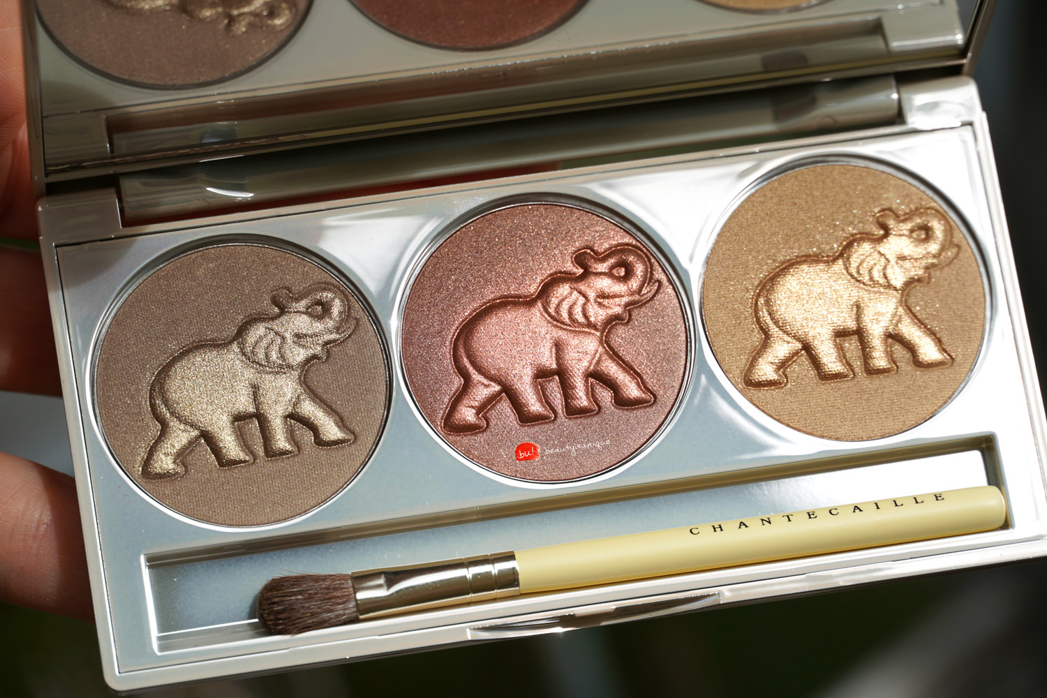 chantecaille-safari-collection-eye-trio